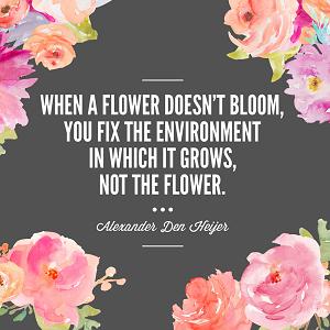 Flower bloom Thumb