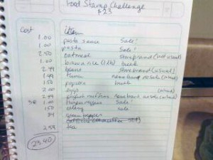 Food-Stamp-Challenge-Lisa-List2-04-28-2012-300x225