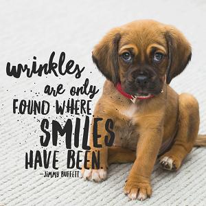 Wrinkles Thumb