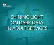 Traverse-dark-data-ebook-adult-services-thumbnail.png